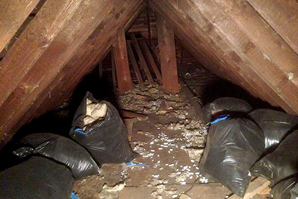 Clearing Old Insulation From The Attic Avoision Com