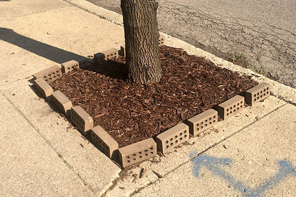bricks-order-border
